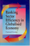 Banking Sector Efficiency in Globalized Economy