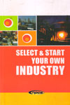 Select and Start Your Own Industry