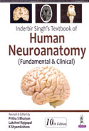 Textbook of Human Neuroanatomy Fundamental and Clinical