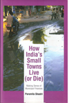 How Indias Small Towns Live or Die
