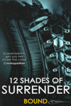 12 Shades of Surrender Bound
