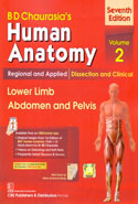 Human Anatomy Regional and Applied Dissection and Clinical Lower Limb Abdomen and Pelvis Volume 2