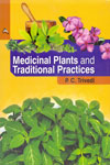 Medicinal Plants and Traditional Practices