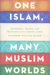One Islam Many Muslim Worlds Spirituality Identity and Resistance Across Islamic Lands