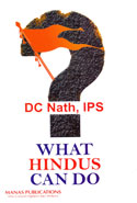 What Hindus Can Do