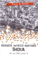 Issues White Anting India As An NRI Sees It