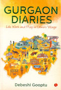 Gurgaon Diaries Life Work and Play in Dronas Village