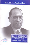 Small Holdings in India and tjeir Remedies