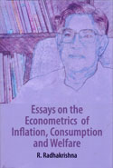 Essays on the Econometrics of Inflation, Consumption and Welfare
