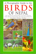 A Photographic Guide To The Birds Of Nepal